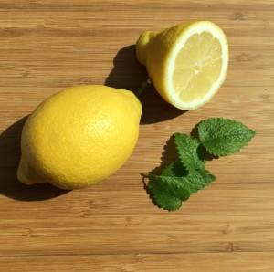 Zitronen-Minze