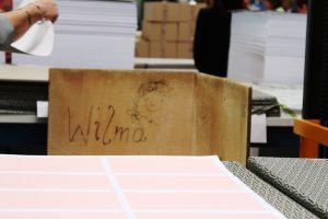 Wilma-2