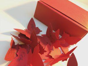 Schmetterlinge-Packet