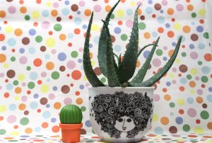 Übertopf-Rosalinde-Cactus-1
