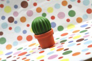 Cactus-Salz-Pfeffer-Streuer