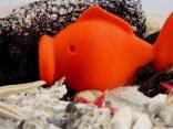 Yolkfish-Glas-Titel