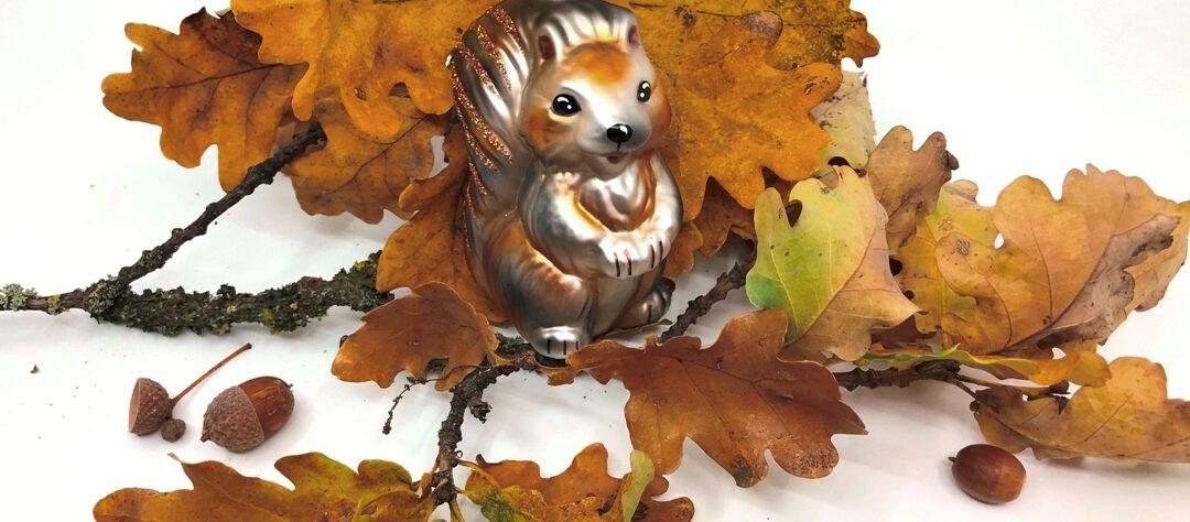 Emmi Eichhörnchen und Co von Inge Glas