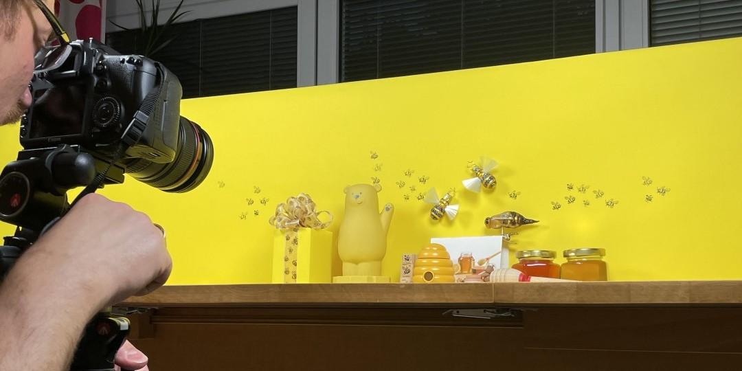 Rosenblüte, Bee Happy, Newsletter, Spaziergänge, Telefonieren